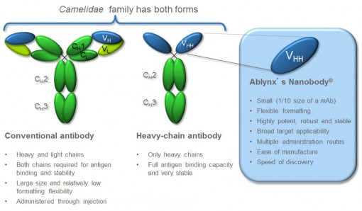 The Nanobody technology was originally developed following the discovery that camelidae (camels and llamas) possess fully functional antibodies that lack light chains. Ablynx's Nanobodies combine the advantages of conventional antibodies with important features of small molecule drugs.